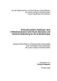 Dissertation_finale Fassung_13Jul2002 - Justus-Liebig-Universität ...