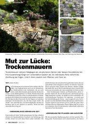 Mut zur Lücke: Trockenmauern - Forster Gärtner von Eden