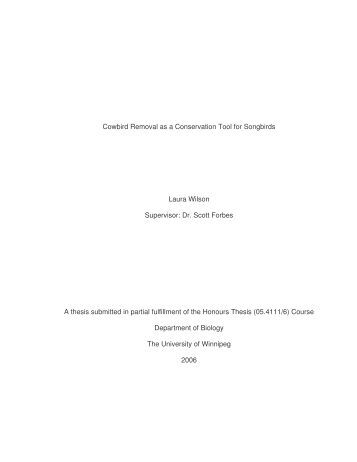 University of london phd thesis