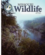 2011-2 MoWild cover - Conservation Federation of Missouri