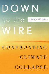 Down to the wire : confronting climate collapse / David - Index of