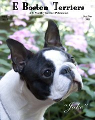Download Oct/ Nov Edition in PDF Format - E Boston Terriers