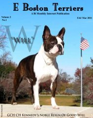 Download February /March Edition in PDF Format - E Boston Terriers