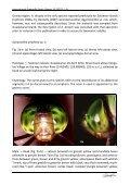 (Anisoptera: Aeshnidae) Milen Marinov - International Dragonfly ... - Page 7