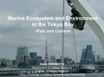 Marine Ecosystem and Environment in the Tokyo Bay