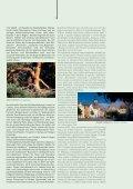 Sport - Niederlausitz - Seite 5