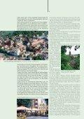 Sport - Niederlausitz - Seite 6