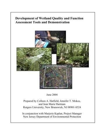 Development of Wetland Quality and Function Assessment Tools ...