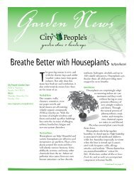 Breathe Better with Houseplants by Kyra Butzel - City Peoples
