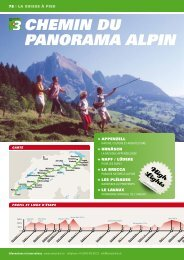 ChEMin dU PAnORAMA AlPin - SwissTrails