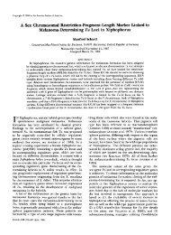 A Sex Chromosomal Restriction-Fragment-Length Marker ... - Genetics
