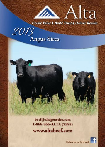 AMF-CAF-NHF - Angus Journal