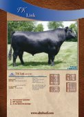 AMF-CAF-NHF - Angus Journal - Page 4