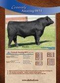 AMF-CAF-NHF - Angus Journal - Page 7