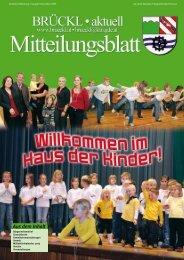 (1,38 MB) - .PDF - Brückl