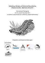 Verbreitung, Ökologie und Schutz der Mauereidechse