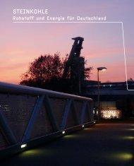 STEINKOHLE Rohstoff und Energie für Deutschland - GVSt