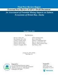 Final-Peer-Review-Report-Bristol-Bay