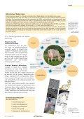 CHbraunvieh 02-2011 - Schweizer Braunviehzuchtverband - Seite 7