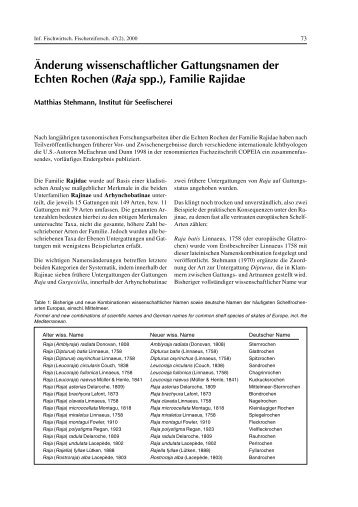 (Raja spp.), Familie Rajidae - Aquatic Commons