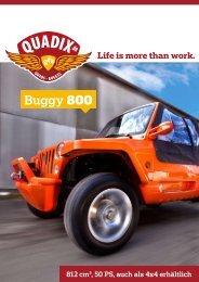 Buggy 800 - GGLW