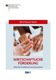 Wirtschaftliche Förderung, 5. Auflage März 2002