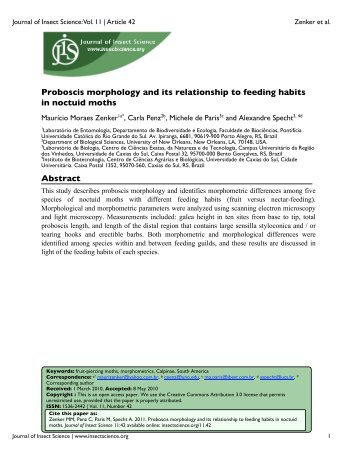 Proboscis morphology and its relationship to feeding habits in ...