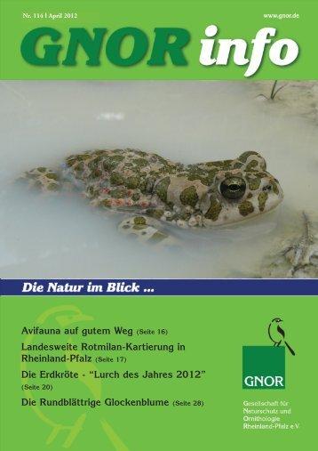 (Seite 17) Die Erdkröte - Gnor