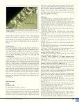 Zirkoniumoksid - Den norske tannlegeforenings Tidende - Page 6