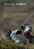 Les mer - Fuglevennen - Page 2