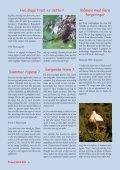 Les mer - Fuglevennen - Page 6