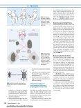 Die Neurologie spinaler Manipulationen - Dr. Garten - Seite 4
