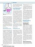 Die Neurologie spinaler Manipulationen - Dr. Garten - Seite 6