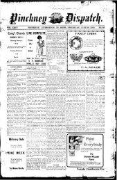 06-28-1906 - Village of Pinckney