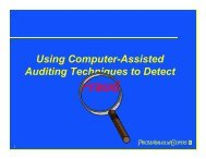 Using Computer-Assisted Auditing Techniques to Detect - Optimize ...