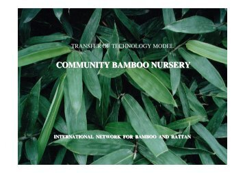 How do I establish a community bamboo nursery? - TECA