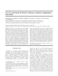 C3, C5, and factor B bind to chitosan without complement activation
