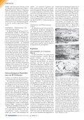 Nr: 663000151002 Name: Duven Marburg Größe: 90x40 Farbe - Seite 4