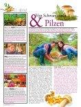 PDF Durchblättern - wieninternational.at - Page 6