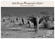 ESCORTED by STAN DAvIES - Wildlife Safari