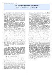 Les Lépidoptères venimeux pour l'Homme - Hétérocères de Guyane ...