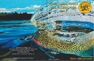 Dowload - PDF Catalog - River Camo and - Montana Fly Company
