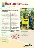 Mais BigBox - Saatbau Linz - Seite 5