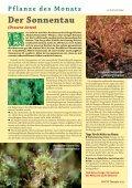 Vitango - phytotherapie.co.at - Seite 6