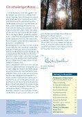 November 2010 November 2010 - Seite 3