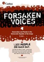 Desecration and Plunder in the Democratic ... - Caritas Australia