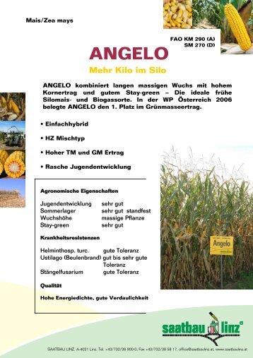 ANGELO Mehr Kilo im Silo - Saatbau Linz