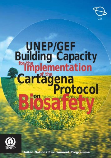 3.3. Implementation of National Biosafety Frameworks In - UNEP
