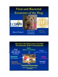 Viral and Bacterial Zoonoses of the Dog - Faculty