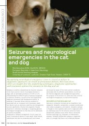 Seizures and neurological emergencies in the cat and dog